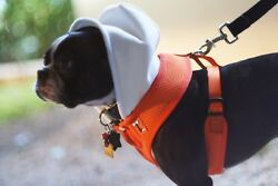 Tiny Smith Company dog harness Mesh vest Autumn Orange Size Large New $15.99