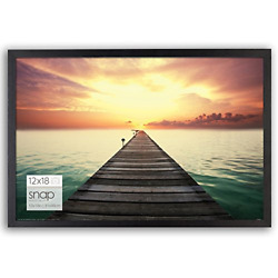 Photo Frame Poster Picture 12 X 18