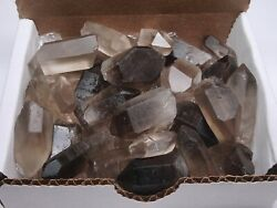 Smoky Quartz Points Collection 12 Lb Natural Clear Brown Crystals Brazil $21.95