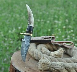 CUSTOM HAND FORGED DAMASCUS Steel Hunting Knife W STAG Antler Handle $49.95