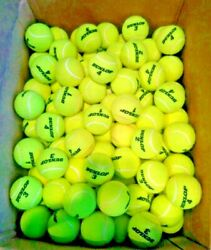 3 4 or 12 TENNIS BALLS DOG TOYS WALKERS PRACTICE $17.99