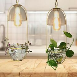 Modern Home Decor Hanging Propagation Chandelier with Pendant Grow Light Planter $189.95