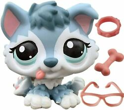 Littlest Pet Shop LPS Toy Cute Husky Child Girl Boy Figure Toy Great Gifts Rare $6.99