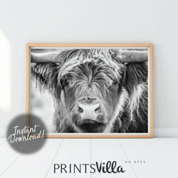 Highland Cow Wall Art Black And White Cow Print Animal Prints Highland Cow $12.59