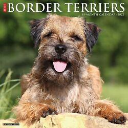 Just Border Terriers 2022 Wall Calendar Dog Breed Free Shipping $14.99