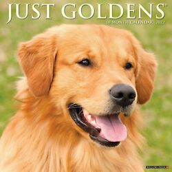 Just Goldens 2022 Wall Calendar Dog Breed Free Shipping $14.99