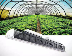 3000W Grow Light 5#x27;x5#x27; Coverage Dimmable Commercial for Indoor Plant 3000K 5000K