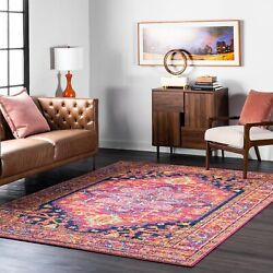 nuLOOM Traditional Vintage Oriental Fancy Area Rug in Pink Orange Multi $31.99
