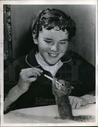 1956 Press Photo Paula Ernisse feeding a squirrel she rescued near her home