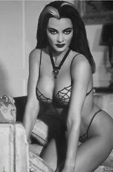 Yvonne De Carlo With Cobweb Underwear 8x10 Picture Celebrity Print