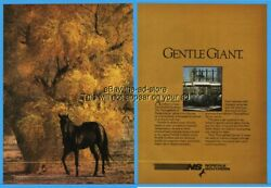 1986 Norfolk Southern NS Railway Railroad Train Horse Pasture GENTLE GIANT Ad $8.09