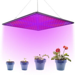 2000W LED Grow Light Full Spectrum Tube Growing Lamp Hydroponic For Indoor Plant $32.98