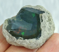 74.2Ct Natural New Found African Black Opal Facet Rough Clarity Enhanced YHP1077 $10.50