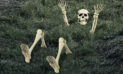 Lawn Skeleton Decoration Halloween Props and Decorations 12 Pieces $19.99