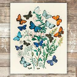Vintage Butterfly Wall Art Print Unframed 8x10 Botanical Wall Decor $13.52