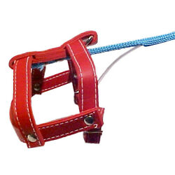 Deluxe SQUIRTING INVISIBLE DOG LEASH Squirts Water Joke Toy Funny Prop Clown Gag $16.89