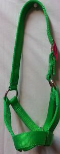 Calf cow Halter Double Ply Usa Made Choice Of Color Hand Made Strong