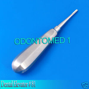 12 Dental Elevator 81 Surgical Dental Instruments
