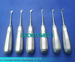 6 Dental Root Elevator Del 1l Surgical Instruments