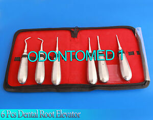 Kit Of 6 Pcs Dental Root Elevator Straight Surgery Extracting Instruments
