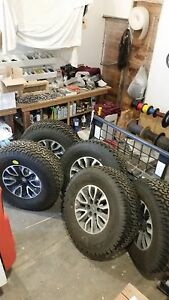 Ford F 150 Svt Raptor 17 Oem Wheels And Tires