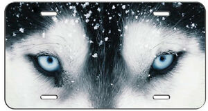 License Plate Wolf Eyes Auto Tag
