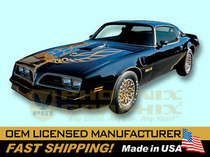 1976 1977 1978 Pontiac Firebird Trans Am Special Edition Bandit Decals Stripes