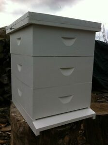 Beehive 10 Frame Langstroth Beehive W o Frames