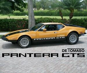 Liquidation Detomaso Pantera Gts Body Side Decals Replacement Stickers