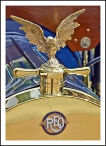 Reo 1910 Down Wing Medallion Emblem Radiator Cloisonne Gold Plated