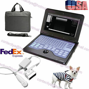 Usa Portable Veterinary Ultrasound Scanner Laptop Machine vet Micro convex Probe