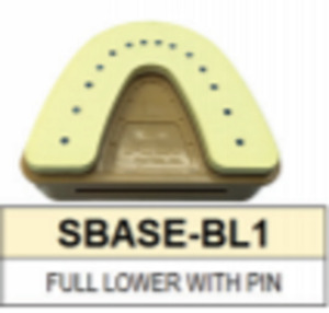 S Base Denture Model Full Lower With Pins