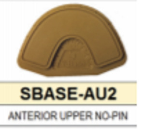 S Base Denture Model Upper Anterior With No Pins