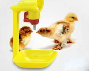 Chicken Automatic Water Drinking 20pcs Nipple Drip Cup Sets Cups Drinker Poultry
