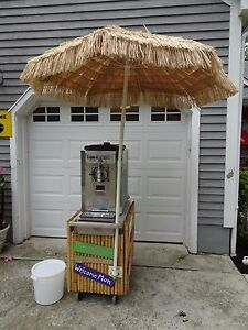 Taylor 430 Margarita Frozen Drink Beverage Machine Package W Tiki Cart