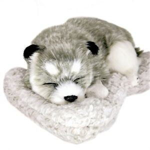 Sleeping Husky Car Baby Dog Car Decor Charcoal Bag Shape Air Freshener