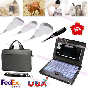 Usa Veterinary Ultrasound Scanner Portable Laptop Machine 2 Probes 3y Warranty