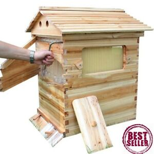 Wooden Beehive Beekeeping Tool Bee House Hive Langstroth Only Beehive House
