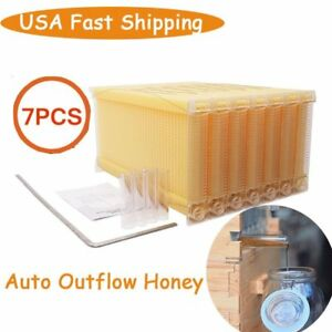 7pcs Auto Flowing Honey Beehive Frames Beekeeping Kit Bee Hive Auto Harvest Best