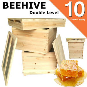 Double Level Langstroth 10 Frame Bee Hive Box Kit Beekeeping Wooden House Usa