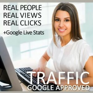 Daily 2000 Direct Worldwide Traffic For 30 Days targeted unique Opt in Visitors