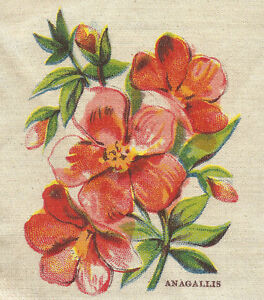 Vintage Antique Silk Applique Use In Crazy Quilt Block Flower Anagallis Nj