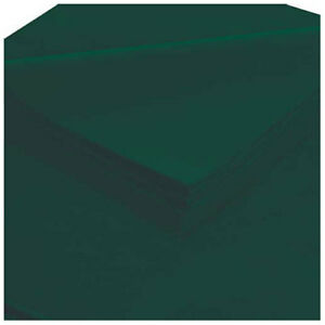 20 X 30 Evergreen Tissue Paper 480 Pack Lot Of 1