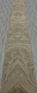Walnut Burl Wood Veneer 5 X 37 With Paper Backer Aa Quality Grade 1 40