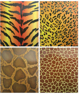 Two Pocket Folders Animal Skin Printed Case Pack 50
