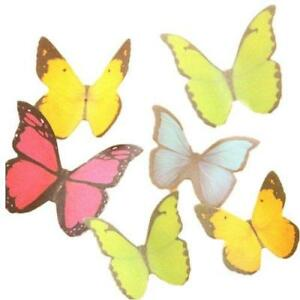 Kitmax tm Pack Of 6 Sets Cute Butterfly Shaped Sticky Notes Gift For