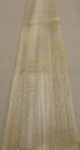 Teak Wood Veneer 5 X 105 Raw No Backing 1 20 Thickness Flexible Flitch Roll