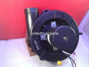 Fasco 7021 9625 Goodman Amana Furnace Inducer Motor 201 90601 20190601 117813 00