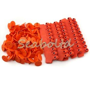 Orange Blank Plastic Livestock Ear Tag Animal Tag For Goat Sheep Pig For 3000pcs