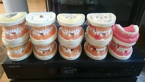 Kilgore Dental Study Models Teeth Tools